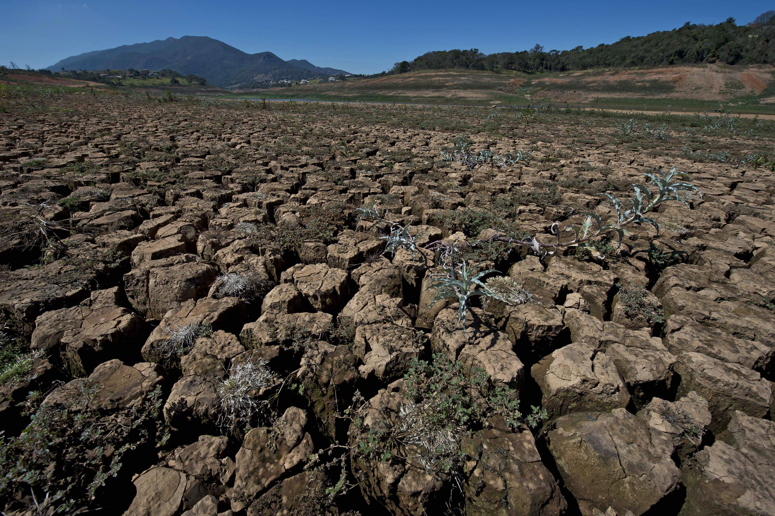 record breaking drought scientists agree - HD2600×1730