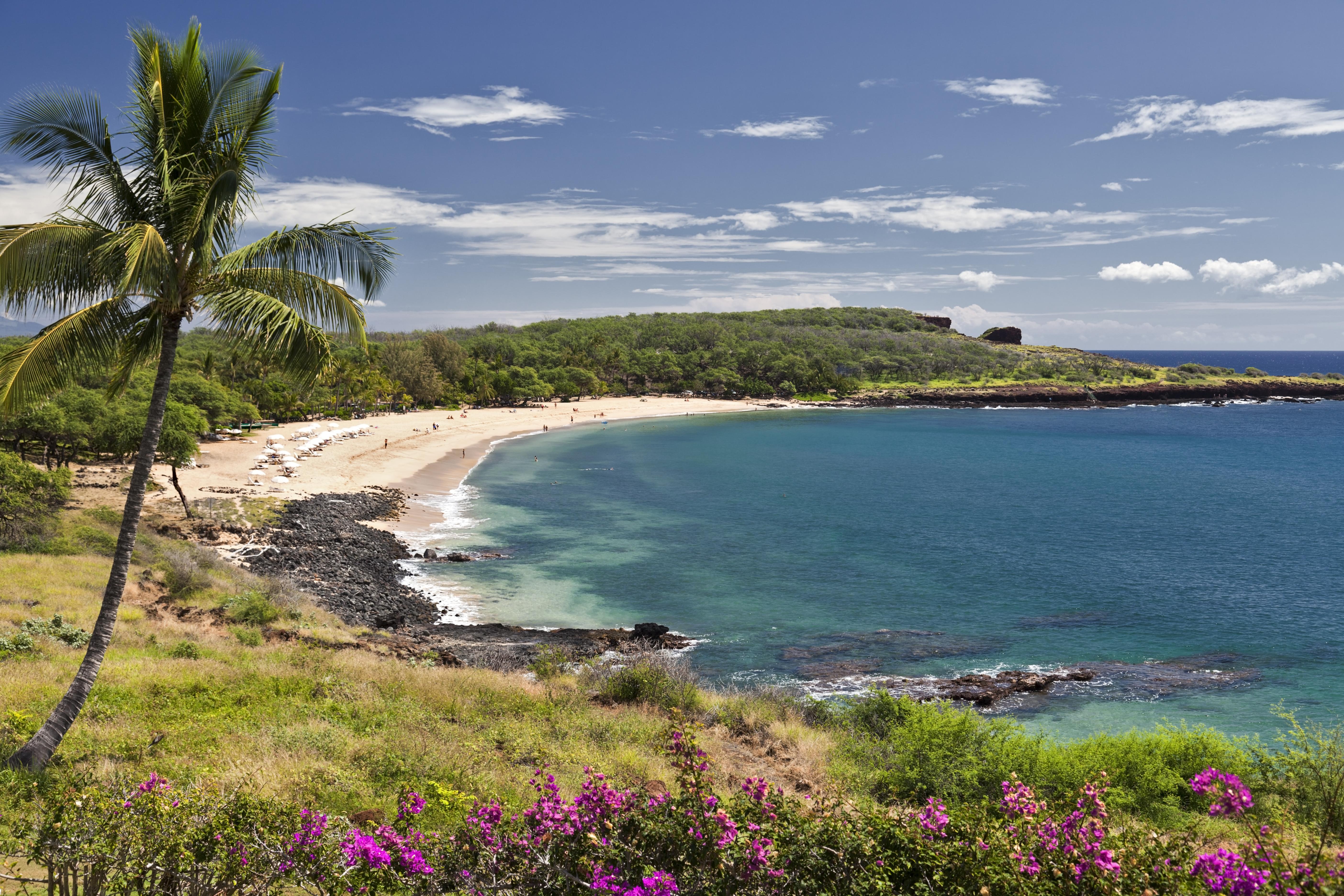 Oahu beach chair rental hawaii beach time - Oahu Beach Chair Rental Hawaii Beach Time 18