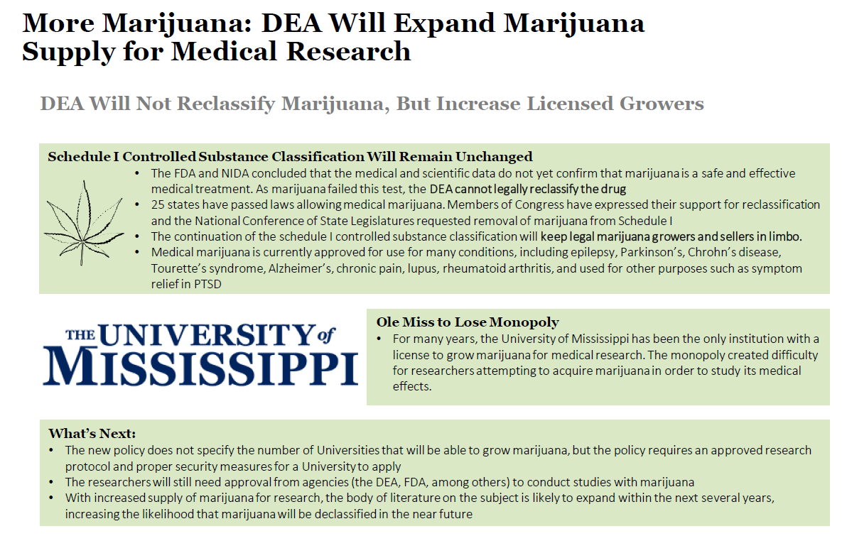 issue on marijuana essay Issues on legalization of marijuana essay, research paper issues in legalization of marijuana the legalisation of marihuana has long been a strongly debated.